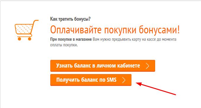 проверить баланс бонусов DNS через смс по номеру телефона